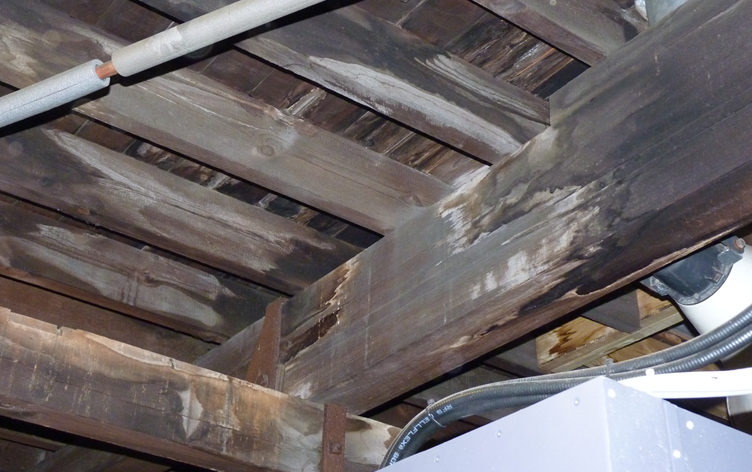 Water leaking through tower roof